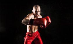 Sur le ring, préparation et précautions pour boxeurs de tous niveaux